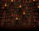 fond-bibliotheque.jpg