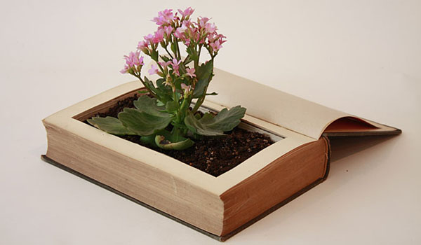 book_planter_fnpty