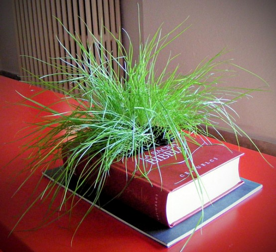old-book-planter-0-554x505