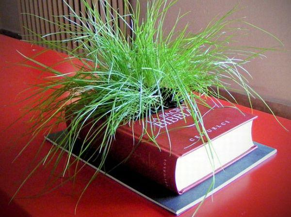 book_planters_d6det