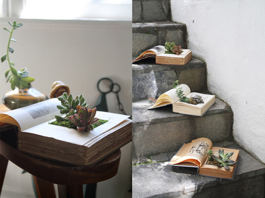 diy-book-planter