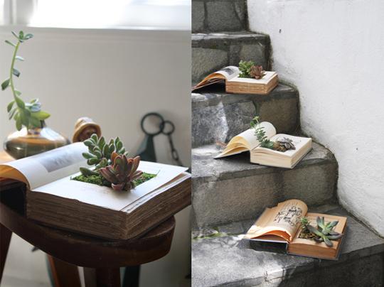 diy-book-planter