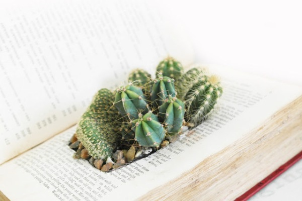 old-book-planter