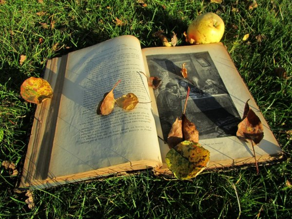 a_book_in_autumn_by_april_mo-d5hjznj