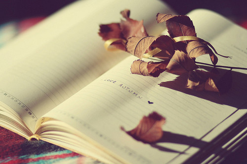 autumn-book-copybook-heart-leaves-love-Favim.com-76903