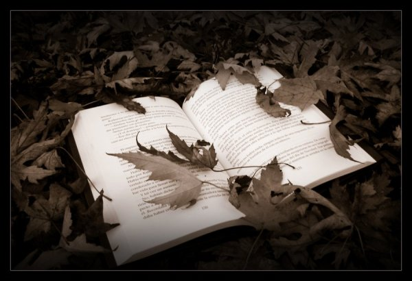 Autumn_book_by_lord_ritmik