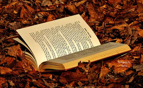 book_leaves