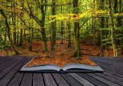 livre+automne
