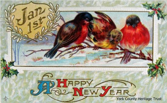 postcard-NY-birds