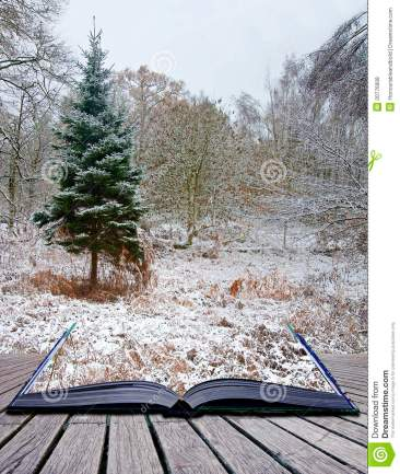 creative-concept-winter-landscape-magic-book-20776908.jpg