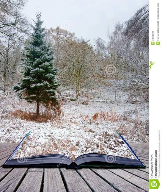 creative-concept-winter-landscape-magic-book-20776908.jpg