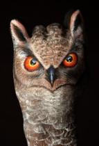 Owl1-231x340