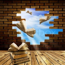 1547421-571797-education-concept-opened-books-flying-through-brick-wall-hole-into-blue-sky
