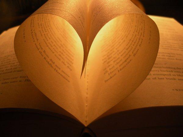 book_heart_iii_by_marissapewpew-d3f6lvv