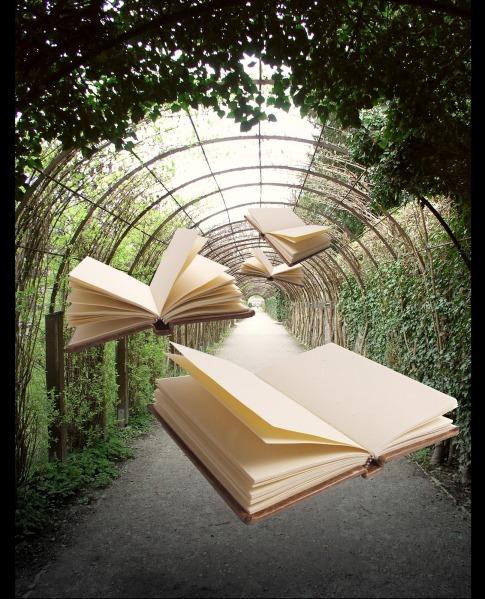flying+books