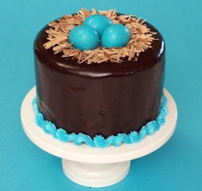 bird-nest-cake1