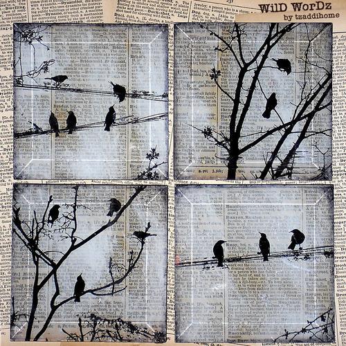 black_bird_glass_coaster_set_-_dictionary_book_art_-_wild_wordz_e6057e0c