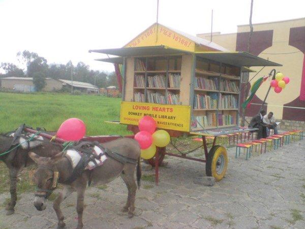 donkey_library