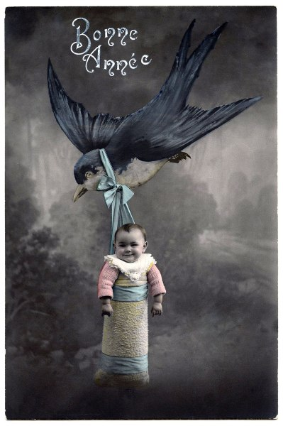 birdbaby-graphicsfairy008
