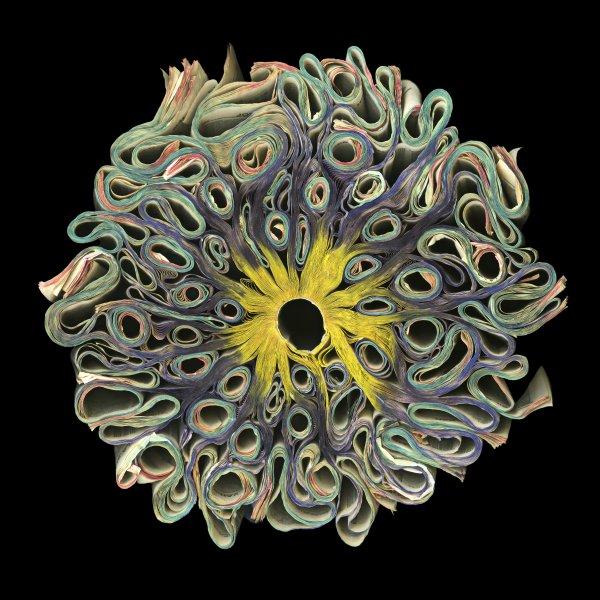 psychedelic_72.jpg