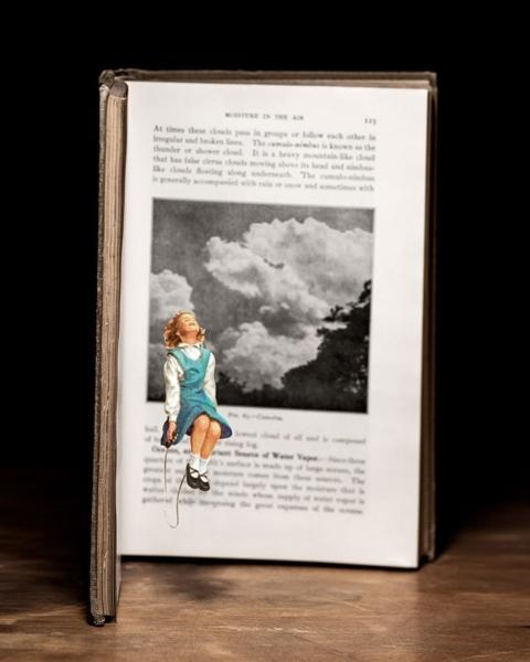 thomas-allen-book-art-2