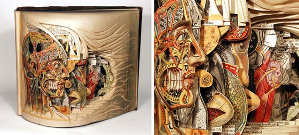 book-surgeon-carvings-art-brian-dettmer-thumb640