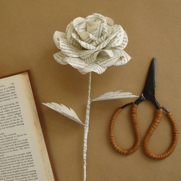 original_book-page-paper-rose