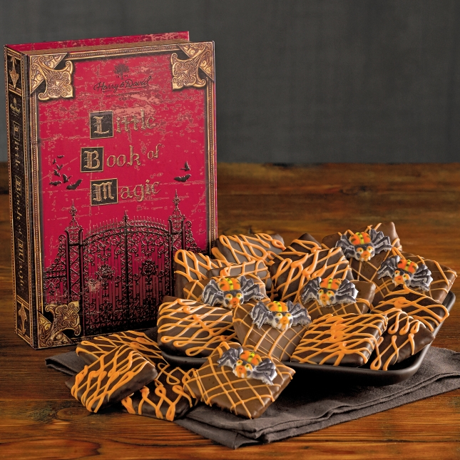 1530_28497-halloween-chocolate-grahams-book-of-spells.jpg