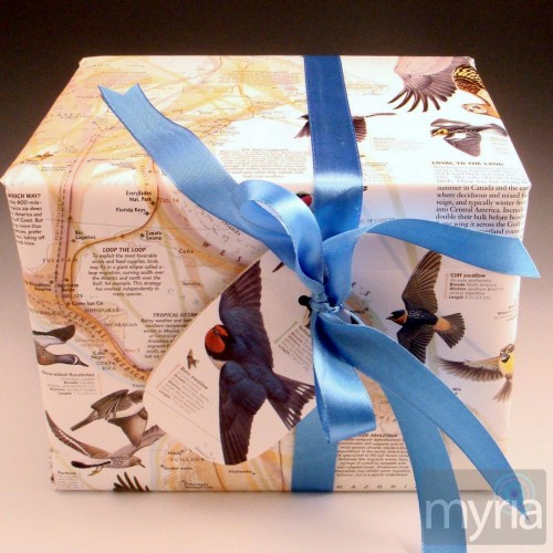 bird-book-gift-wrap-500x500
