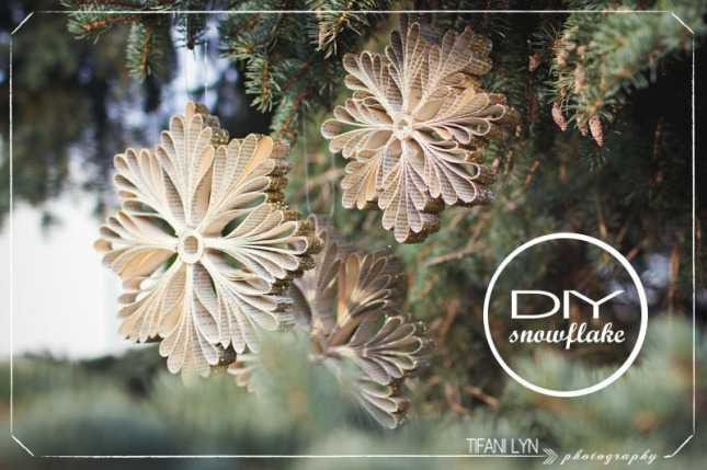 DIY-Christmas-Snowflake-Tifani-Lyn-16.jpg