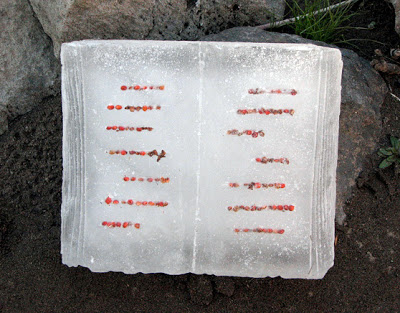icebook-image.jpg