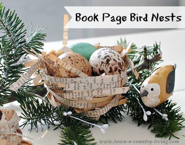 Book-Page-Bird-Nests.jpg