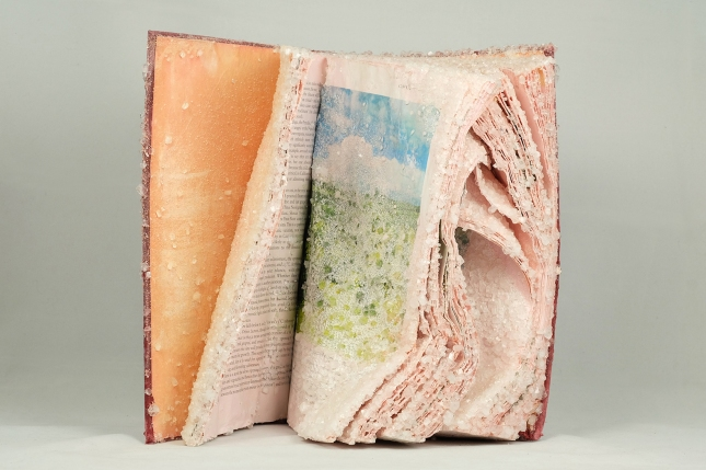 Crystallized-Books-by-Alexis-Arnold-4.jpg
