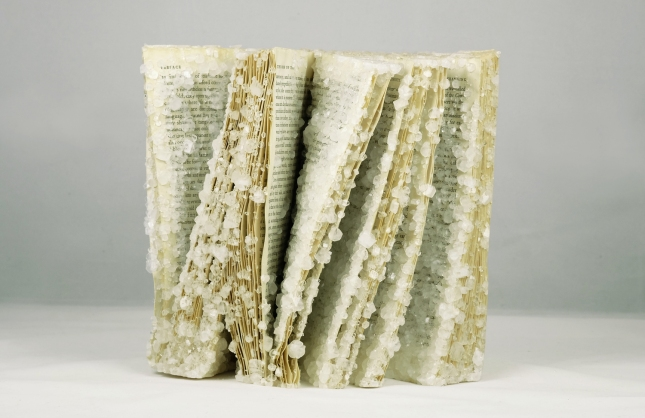 Crystallized-Books-The-Order-of-Things.jpg