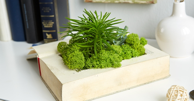 Book-planter-DIY-12.jpg