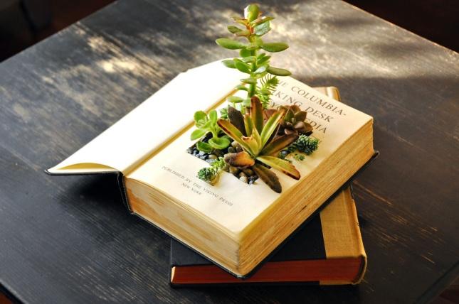 book-planter.jpg