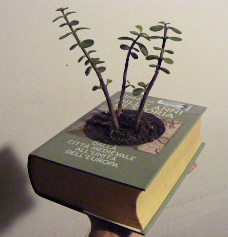 recycled-book-planter-design.jpg
