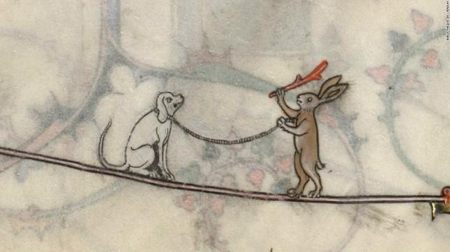 160608125751-medieval-killer-rabbits-10-super-169.jpg