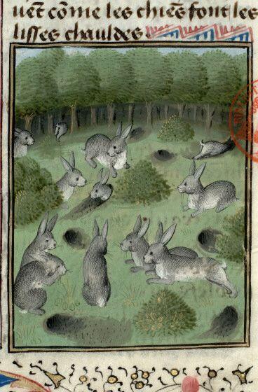 5cf86ea18db72940fdddde8b0aeee888--cute-bunny-medieval-art.jpg