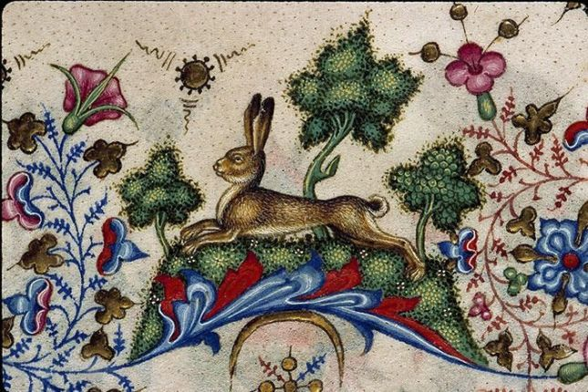 bf8874aecb56c9156ec6eb677c96f407--rabbit-art-illuminated-manuscript.jpg