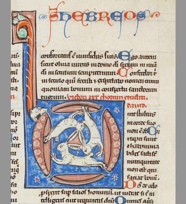 de926807fc04480e0f03c439f135001c--st-gallen-celtic-designs.jpg