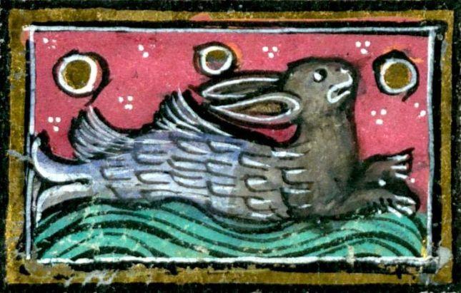 e71c29a779f0682b9eeb032f928c5957--rabbit-art-illuminated-manuscript.jpg