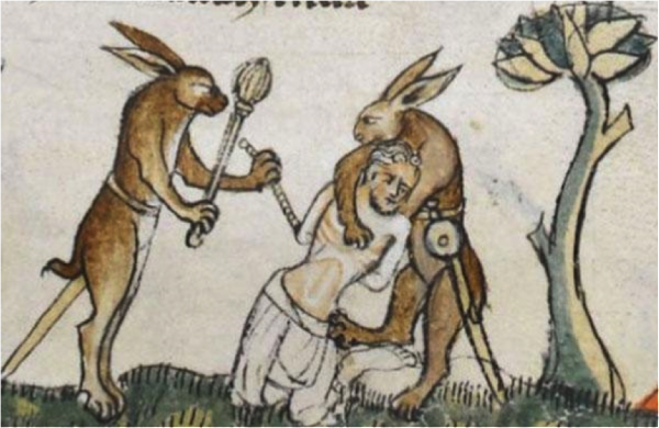 Medieval-Rabbit-3-600x390.png