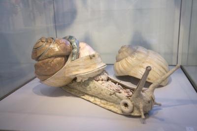 Les modèles anatomiques en papier mâché du docteur Auzoux vers1820
