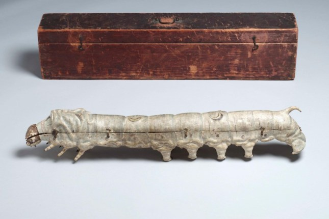 modele-anatomique-docteur-Auzoux-1820-27.jpg